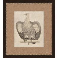 Antique Eagle 17W x 19H