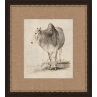 Antique Cow 17.5W x 19.5H