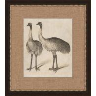 Antique Ostrich 17W x 19H
