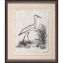 Little White Heron 22W x 26H