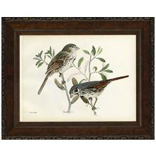 Small Brasher Birds II 21W x 17H