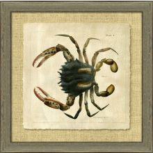 Antique Crackled Crab I 28.5W x 28.5H