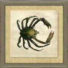 Antique Crackled Crab II 28.5W x 28.5H