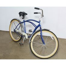 Blue Beach House Bike