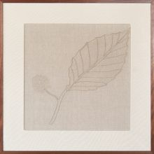 Mountain Mint Embroidered Botanical 36W X 36H