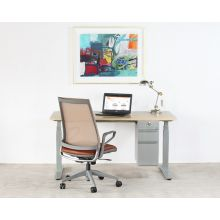 Sit Or Stand Desk With Silver Base & Hanging Cabinet