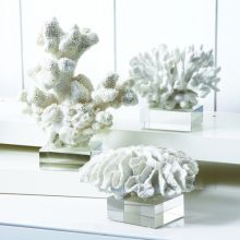 Set of 3 White Coral Sculptures - Cleared Décor