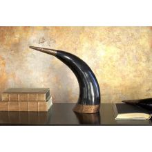 Set of 2 Authentic Horns - Cleared Décor