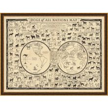 Dogs Of All Nations Map 43W x 33H