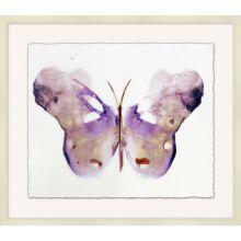 Crystalline Butterflies 4 31W x 27H