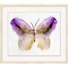 Crystalline Butterflies 5 31W x 27H