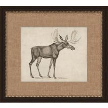 Antique Moose 19.5W x 17.5H