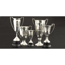Set of 5 Vintage Engraved Trophies - Cleared Décor
