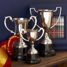 Set of 3 Trophies - Cleared Décor